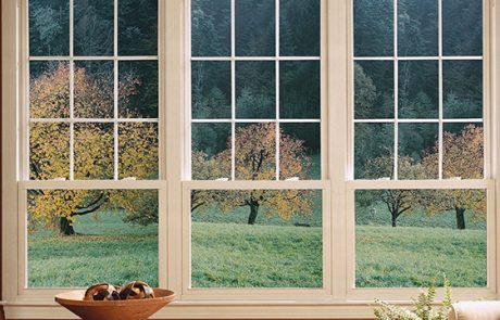 Wood Window Replacement